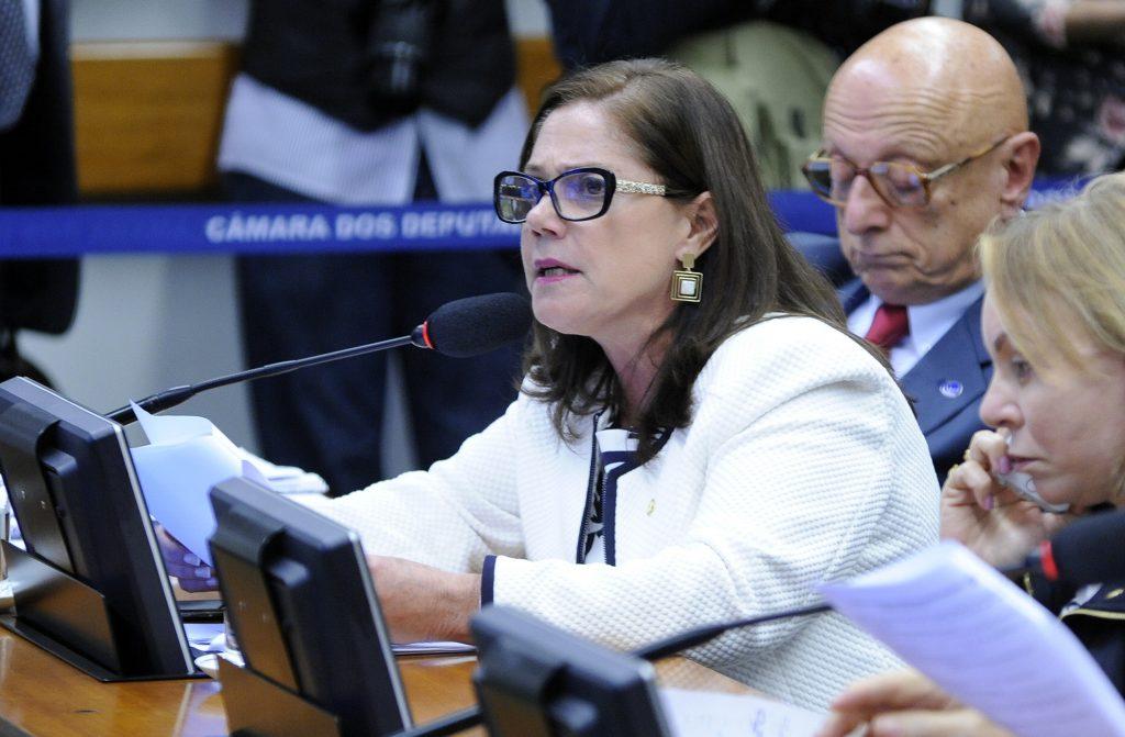 Soraya Santos: é preciso garantir direitos individuais, e as questões relativas às mulheres devem ser tratadas separadamente para que possam avançar